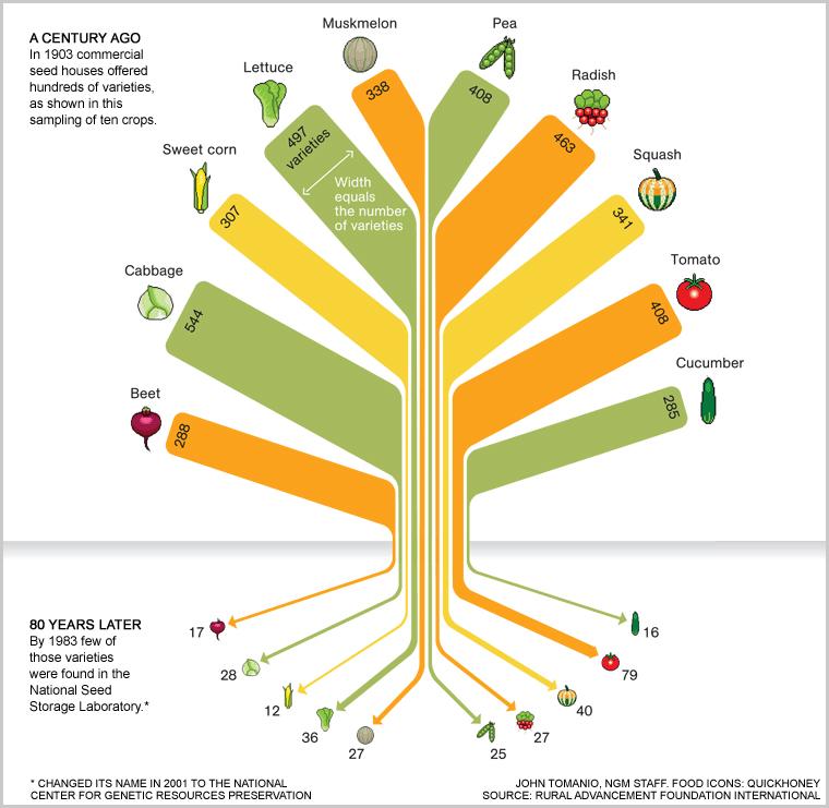 food-variety-tree-754